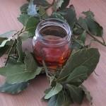 Лавровый лист – народное средство при сахарном диабете