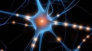 симптомы и диагностика нейропатии