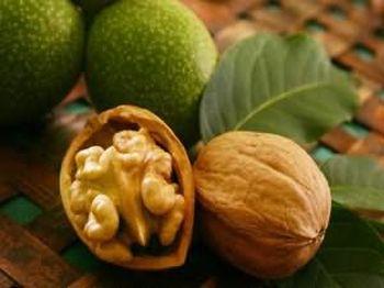 полезны ли орехи при сахарном диабете