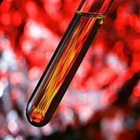 Что такое глюкоза в плазме крови и какой уровень показателя является нормальным